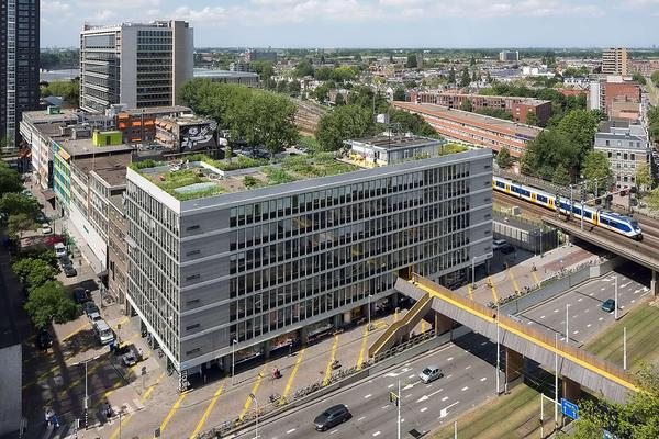 Rotterdam Dachgärten_Energy-Mag